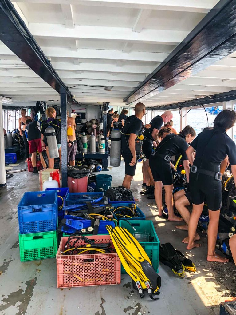 Koh_Tao_Thailand_Surat_Thani_Travel_Blog_Asia_Island_Hopping_Indian_Blogger_Hiking_Beach_Sailing_Scuba_Diving_Adventure_Exploring_Vegan_vegetarian_Cafe_Food_Guide_Muay_Tai_Fitness_boxing_Fight_Club_Koh_Nang_Yung_Island_Hopping_Scuba_Diving